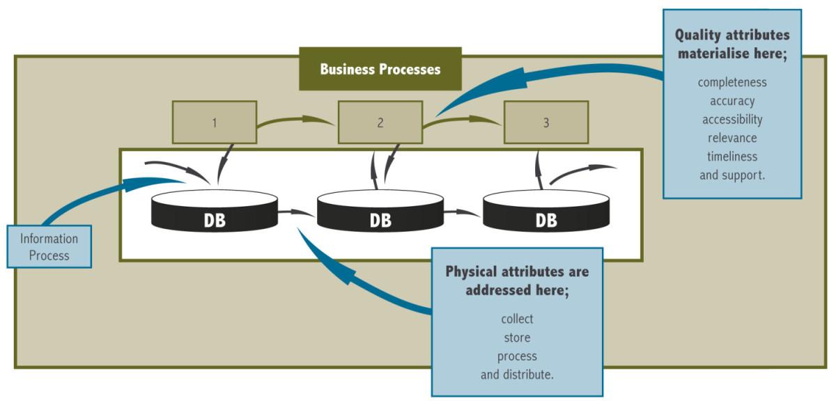 Information Process